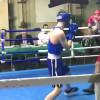Sezon bokserski