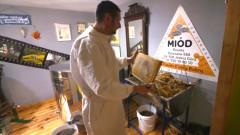 Wirowanie miodu