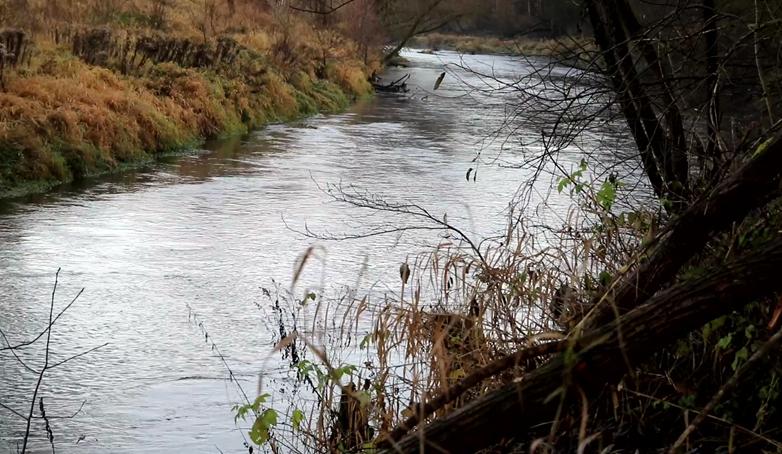 Dbajmy o rzeki