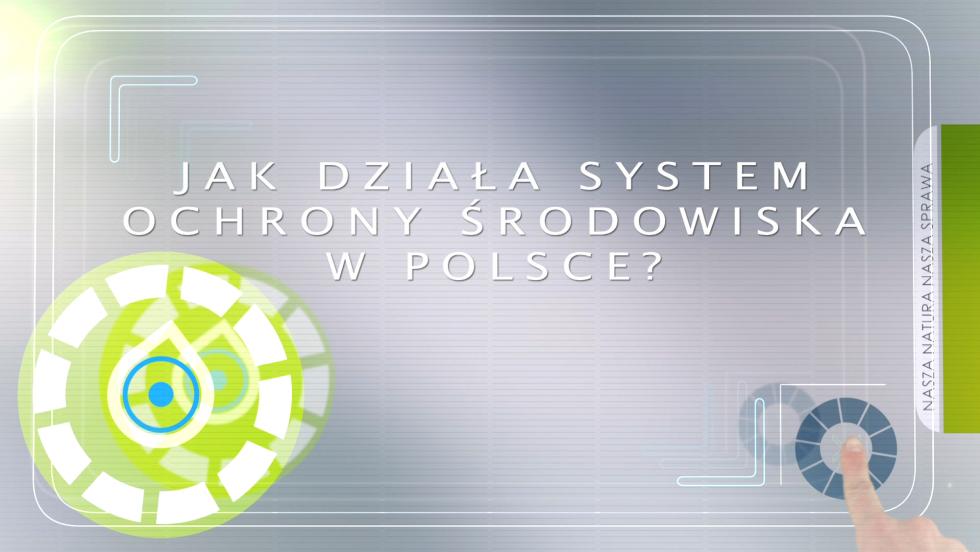 Jak działa system ochrony środowiska w Polsce